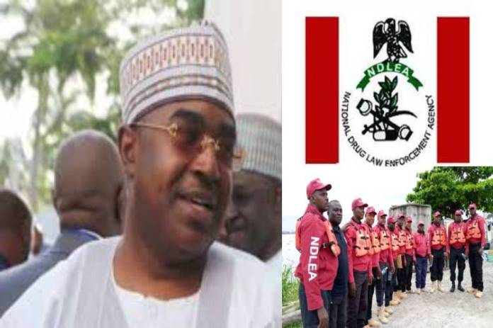 Marwa Appointed By Buhari As NDLEA Chairman