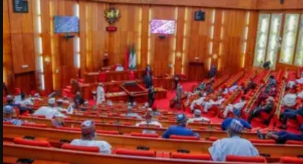 N895bn Supplementary Budget Passed For Second Reading At Senate
