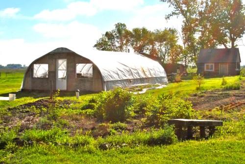 Hoop house and perennial garden, Week 23
