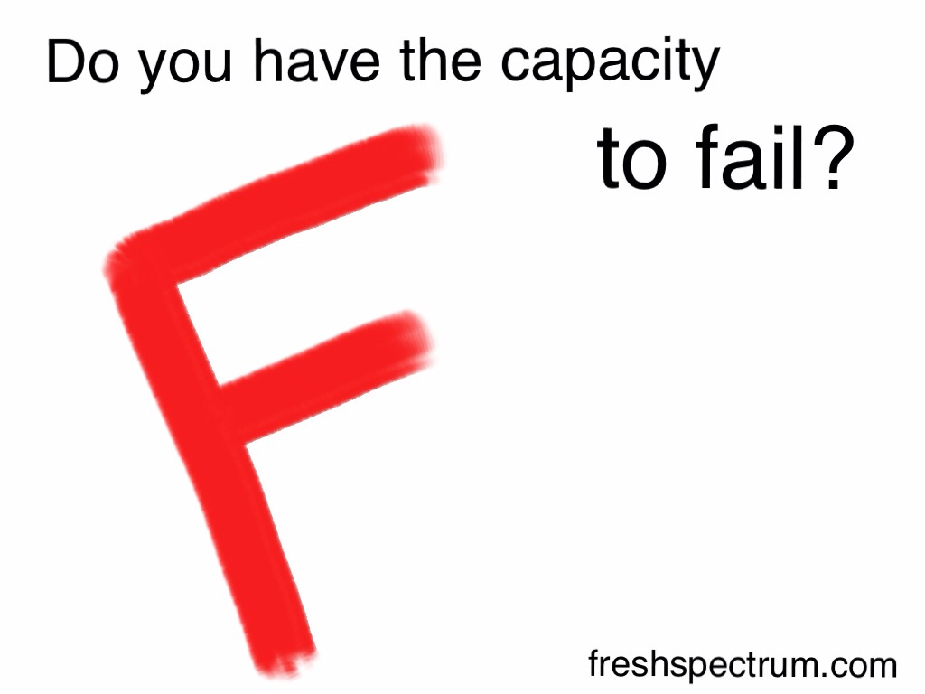Do you have the capacity to fail?