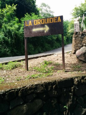 The road sign pointing down a nearly-overgrown cobblestone driveway to the hidden gem, La Orquidea B&B