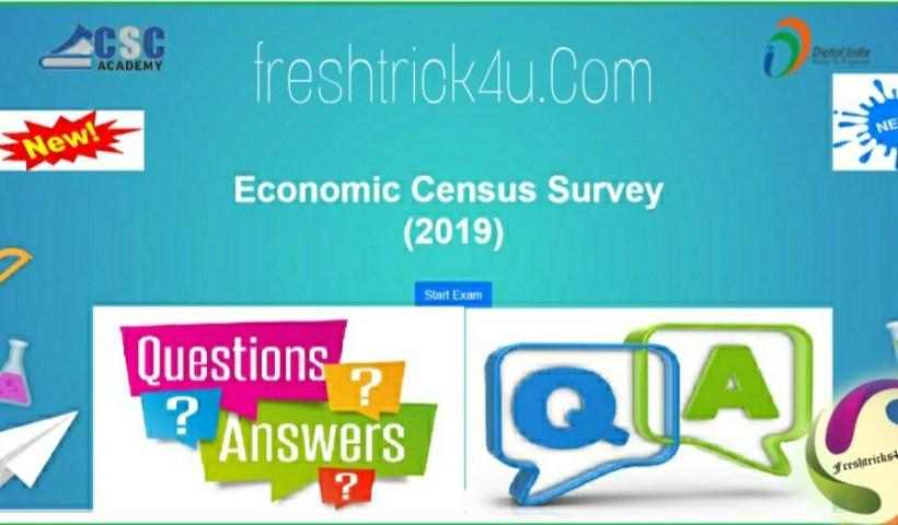 Economic Census Survey Assessments