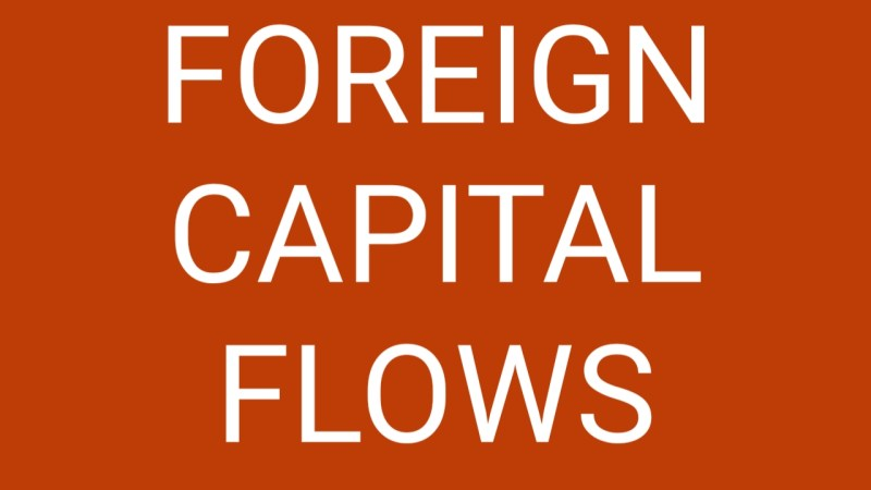 Foreign Capital Flows For Business Owners
