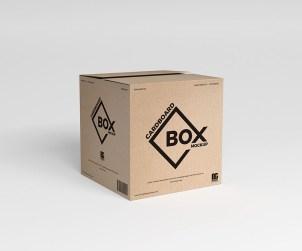 Free Square Cardboard Box Mockup