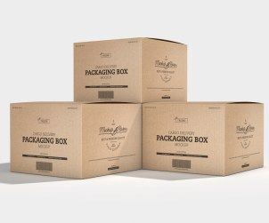 Cargo Delivery Packaging Box
