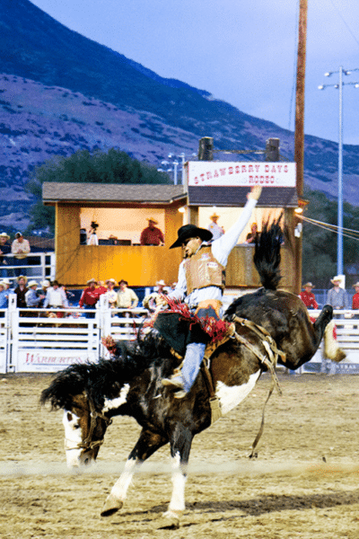 Strawberry Days Rodeo