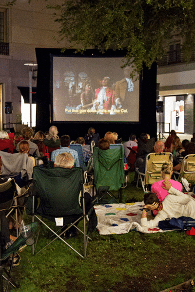 Movies in the Park Picnic