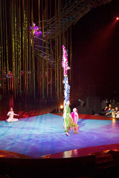 Cirque du Soleil: Varekai Traveling Show