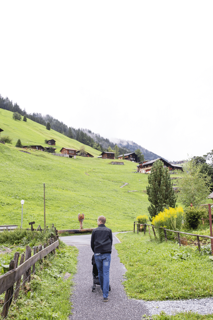 Switzerland Travel Guide: Day 1 Itinerary Visiting the Swiss Alps Guide