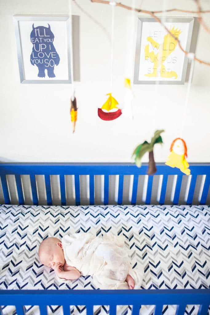 Nursery-Theme-Where-the-Wild-Things-Are