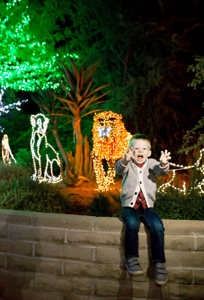 Zoo Lights Phoenix Coupons