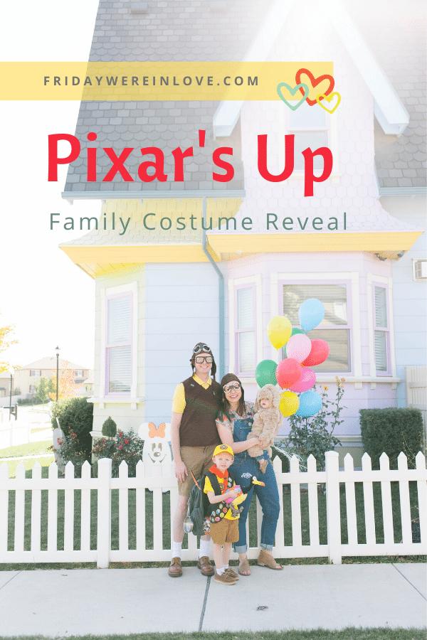Disney's Up Family Halloween Costume