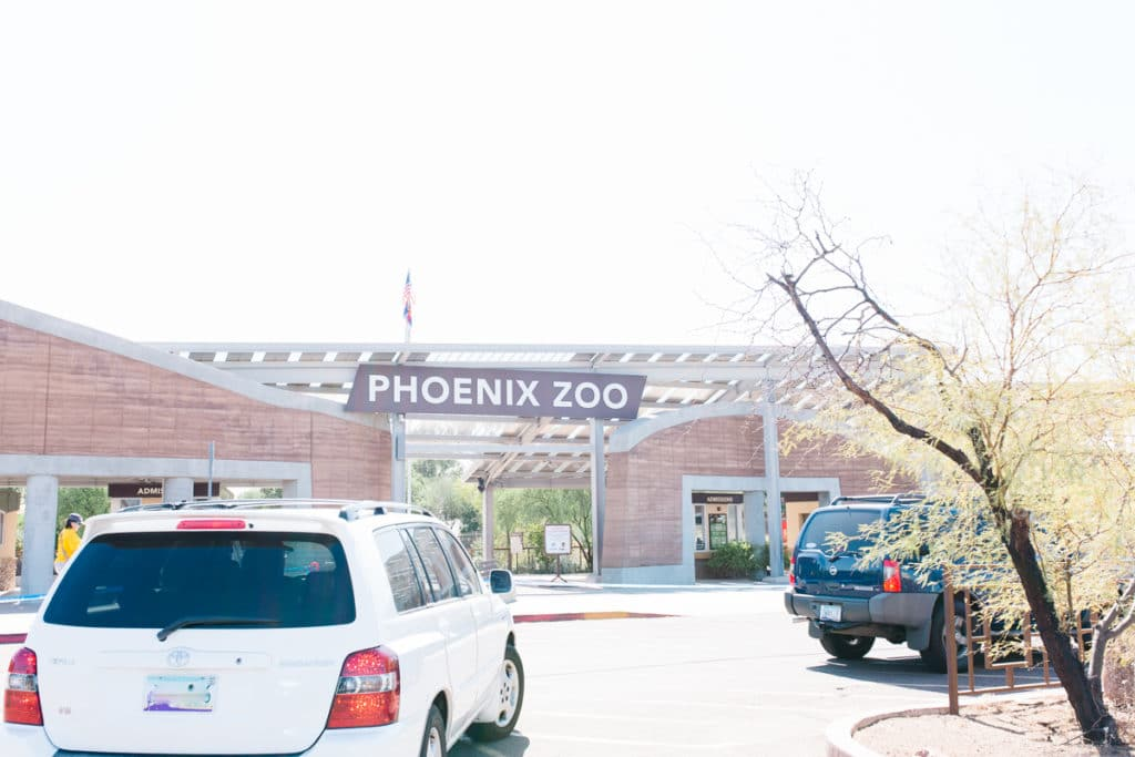 Drive Through Zoo Arizona