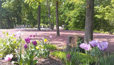 outdoor_chapel_tulips
