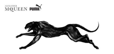 Puma_mancat_two