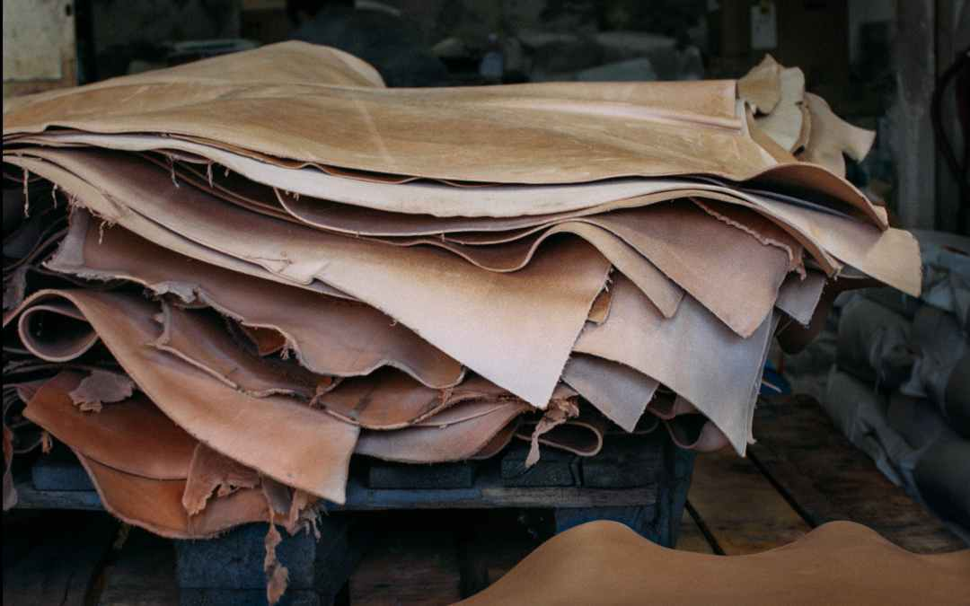 Leather hides