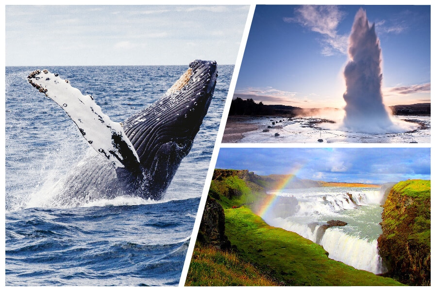 product images Whale Watching and Golden Circle