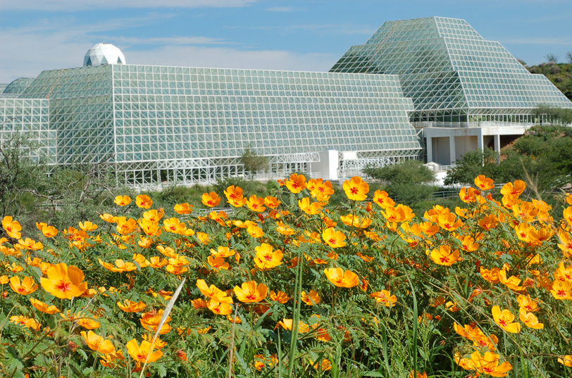 biosphere-2-with-wildflowers-4