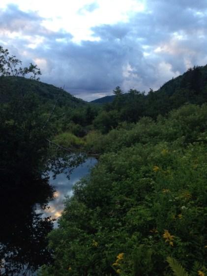 Sky reflected in wetlands