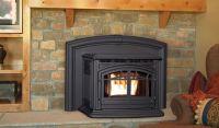 Enviro M55 Multi-Fuel Fireplace Insert - Friendly ...