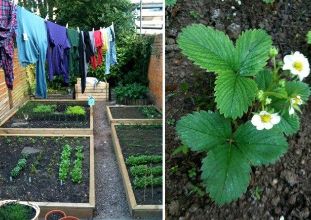 Gardening4yearsago