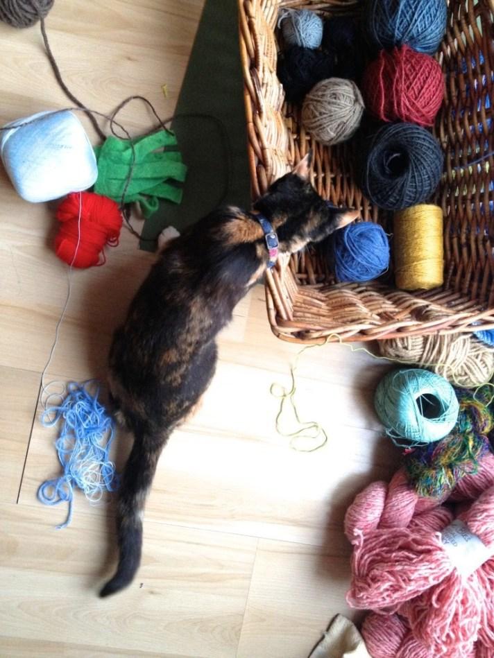 "Leia is ""helping"" to organise my yarn stash!"