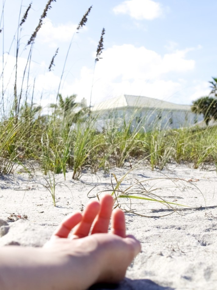 florida coconut beach