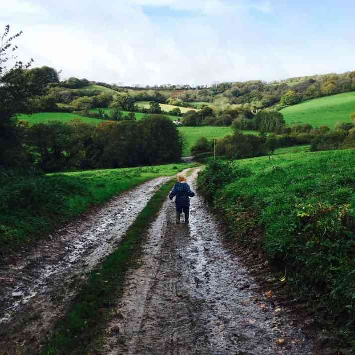 Devon in Autumn