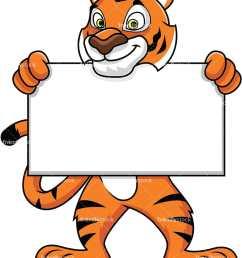 tiger mascot holding an empty sign vector cartoon clipart [ 800 x 1067 Pixel ]