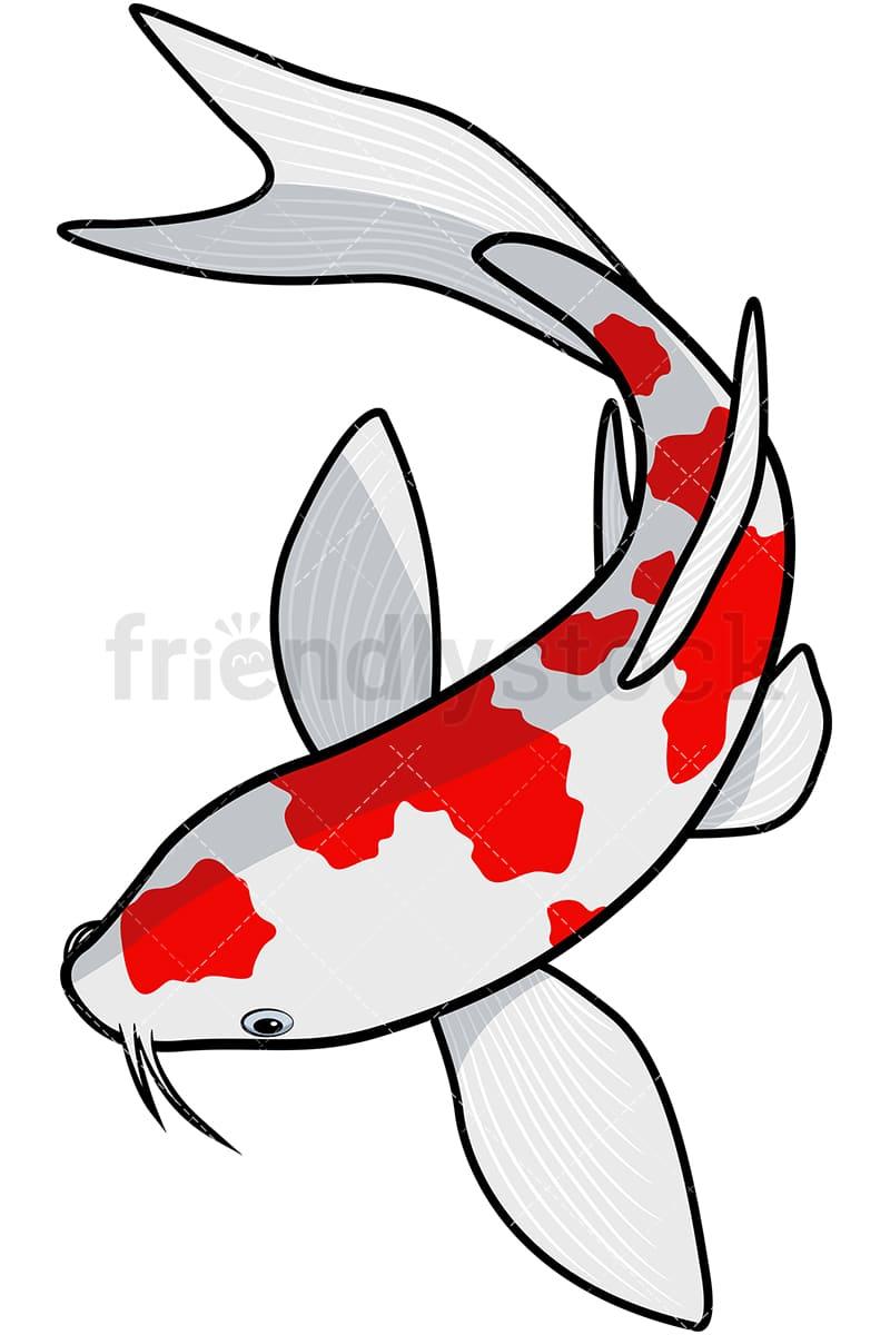medium resolution of koi fish vector cartoon clipart