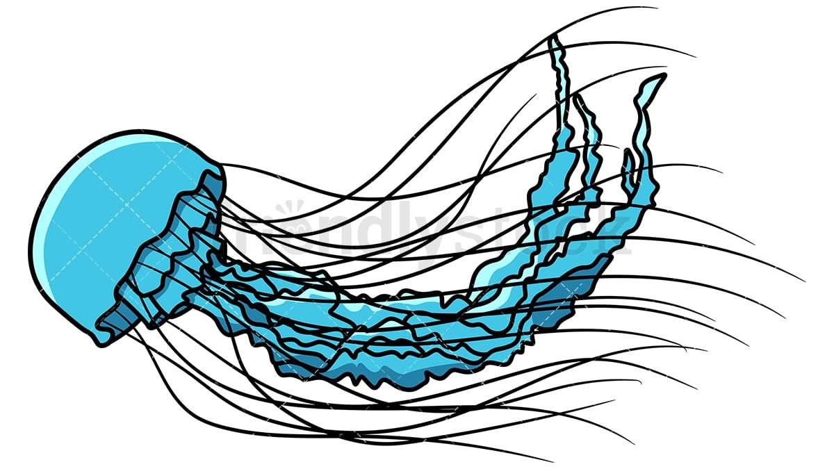 hight resolution of blue jellyfish vector cartoon clipart