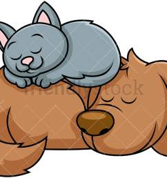 dog and cat sleeping together png jpg and vector eps file formats infinitely [ 1067 x 800 Pixel ]