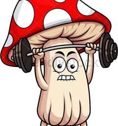 mushroom mascot lifting weights vector cartoon clipart [ 800 x 1067 Pixel ]