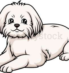 maltese lying down vector cartoon clipart [ 1000 x 803 Pixel ]