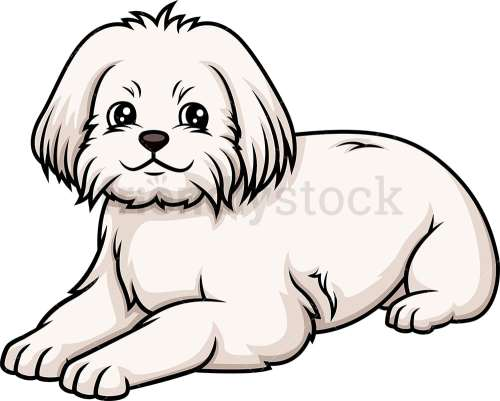 small resolution of maltese lying down vector cartoon clipart