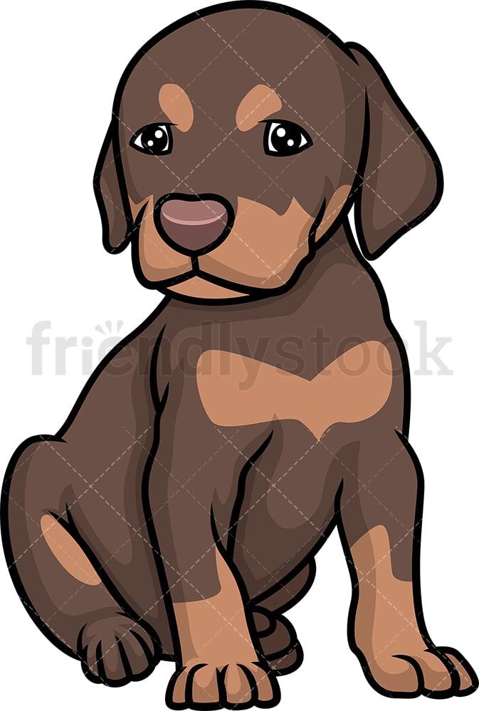 Cartoon Puppy Pictures : cartoon, puppy, pictures, Doberman, Puppy, Cartoon, Clipart, Vector, FriendlyStock