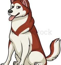 obedient alaskan malamute sitting vector cartoon clipart [ 869 x 1000 Pixel ]