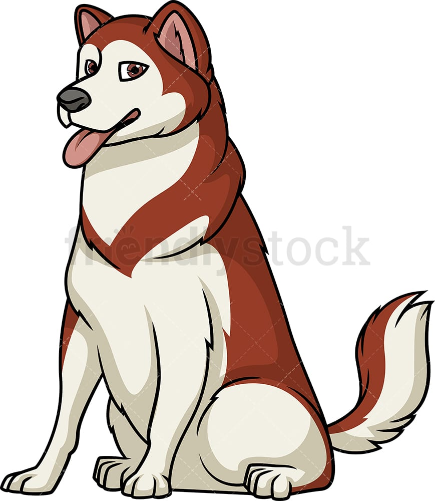 hight resolution of obedient alaskan malamute sitting vector cartoon clipart