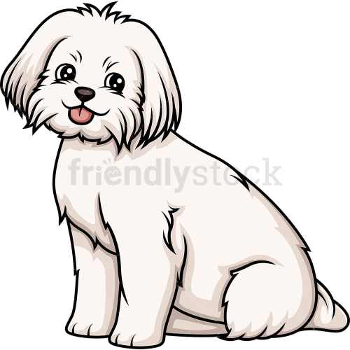 small resolution of obedient maltese sitting vector cartoon clipart