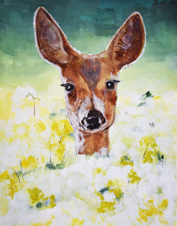 Tim Dietze – Bambi in the Medow