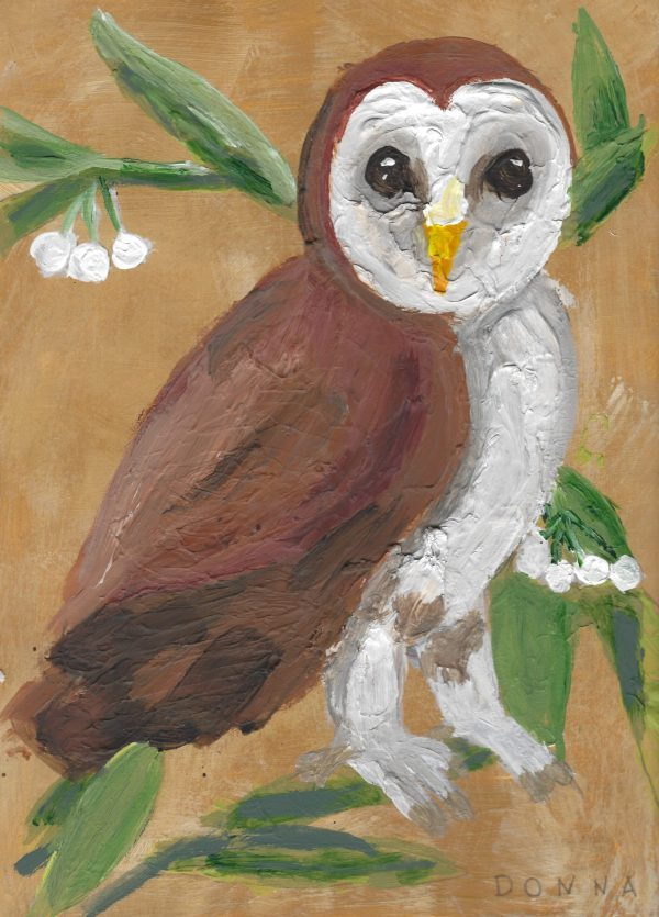DS Barn Owl 9×12 mixed $50 5-18
