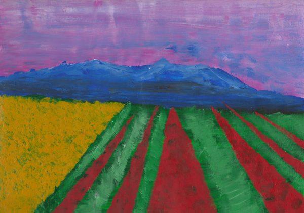 DS Skagit Valley Tulip Fields 9×12 acrylic $50 6-16