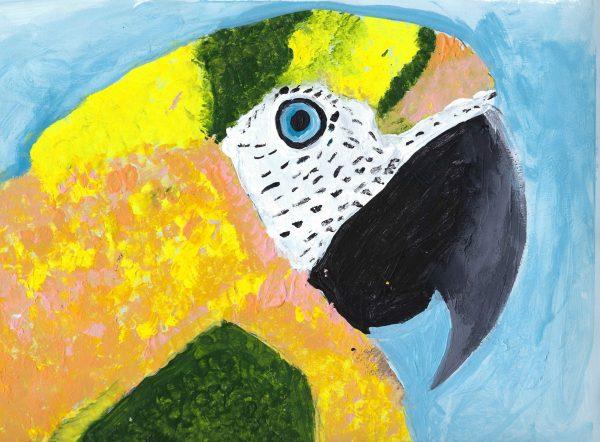 ShL beautiful bird 9×12 acrylic 5-19 $45