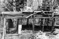 """BC Electric Birney Streetcar No. 400, Abandoned In The Bush Near Victoria."" RBCM&A/E-01980."