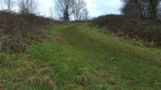 Looking up the slope alongside St Anne's Well