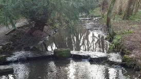 Stepping stones over Brislington Brook.
