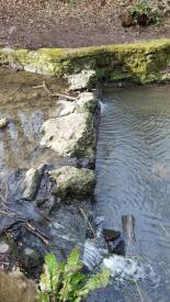 Stepping stones over the Brislington Brook.