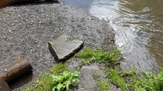 One of the Well capping stones found in the Brook.