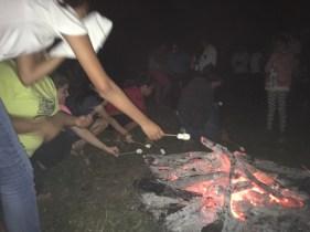 It's really hard to roast marshmallows on skewers!