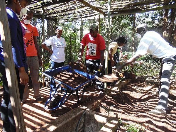 Wheelbarrow loads of soil by cngarachu